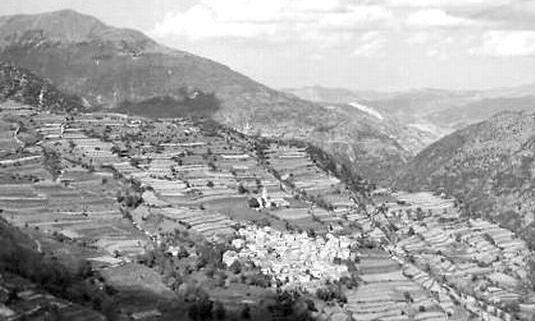 Bogli 1959